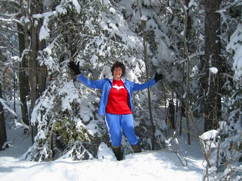 Upper Peninsula winter