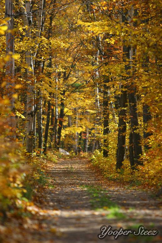 Fall Colors in Upper Peninsula