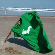 Steez on the Beach